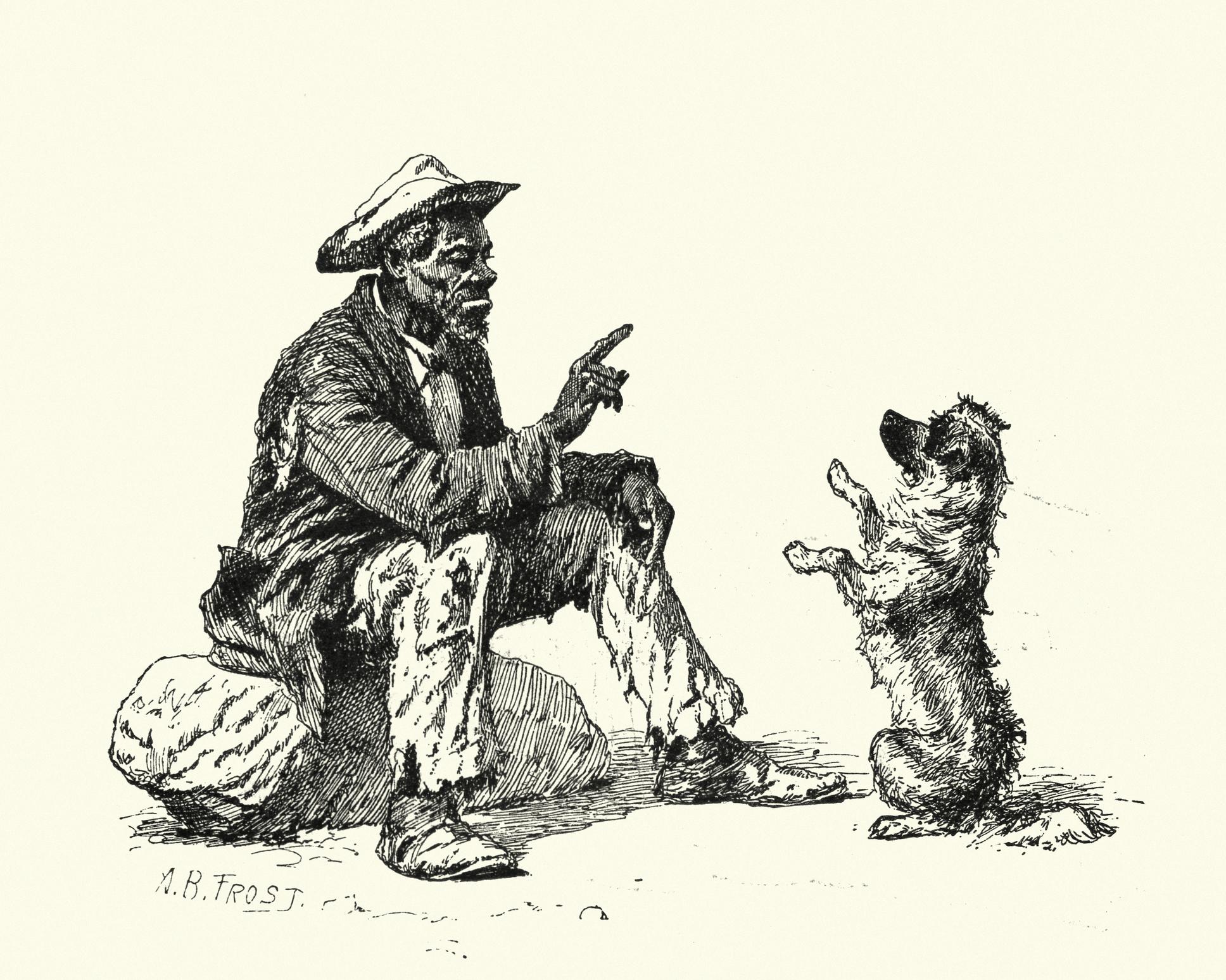 Hundens historia och utveckling